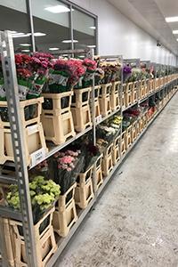 Flowervision Shop Floor